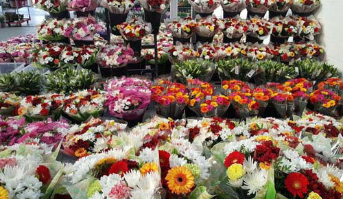 Buy From the Best Wholesale Flower Supplier in London