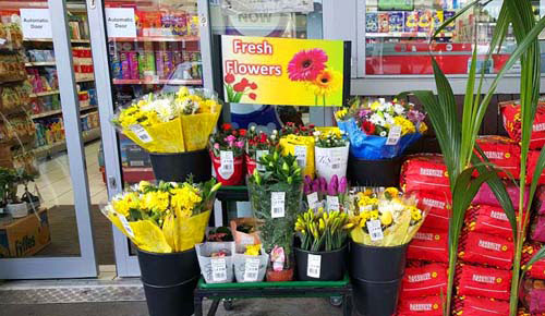 Fresh Flower Supplier in Hayes