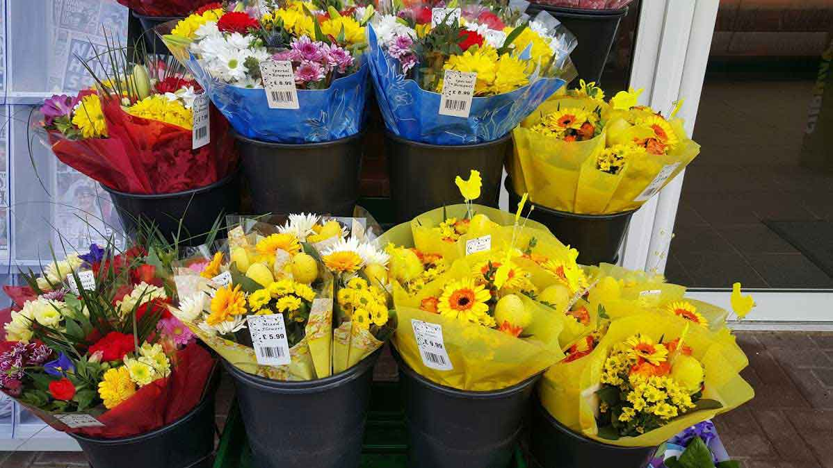 Wholesale Flower Suppliers