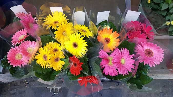 Wholesale Flowers and Supplies in UK