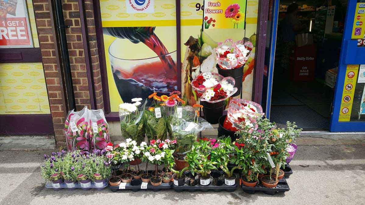 Wholesale Flowers and Supplies in London