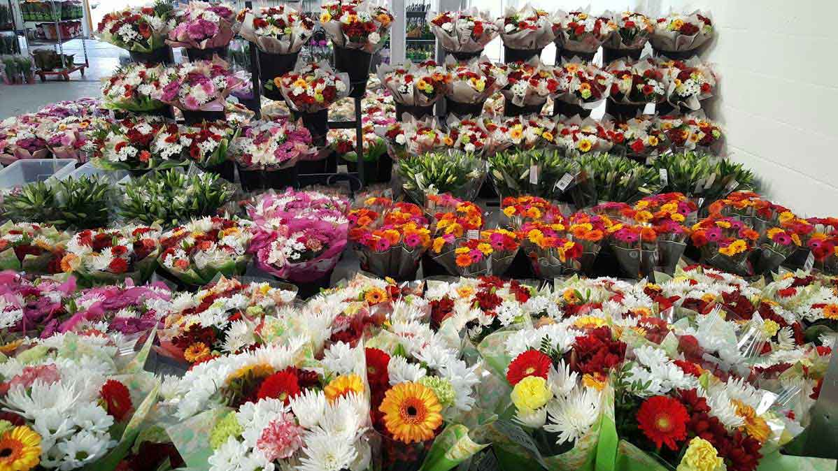 Wholesale Flower Suppliers in UK
