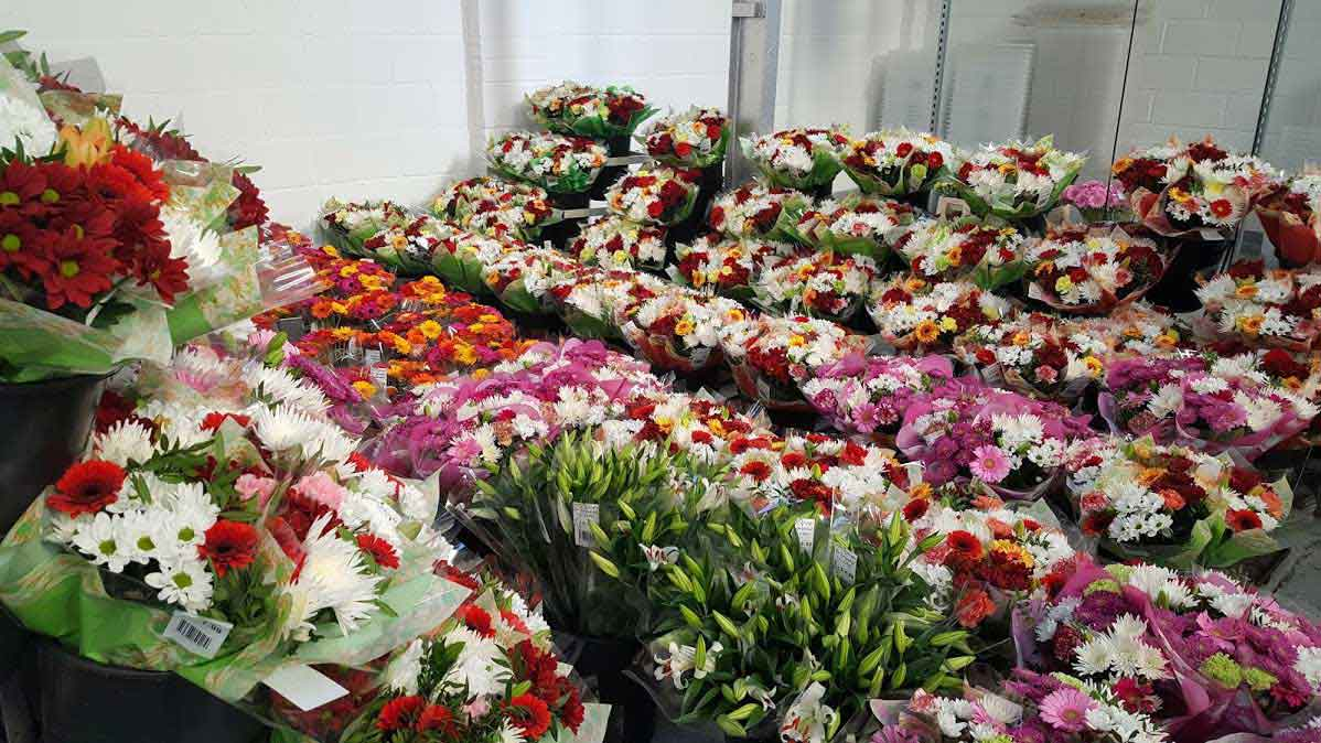 Wholesale Flower Suppliers UK